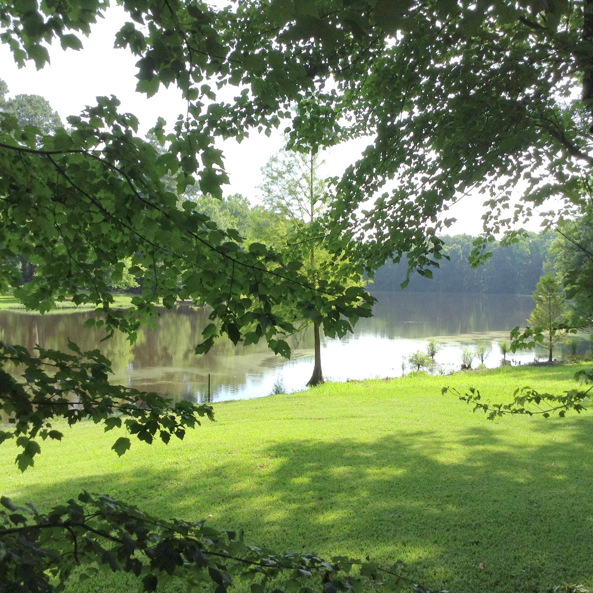 Living On A Lake : Just Sold!Country Living on Private Fishing Lake ...