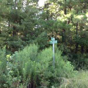Lot #35 CR 2432 & 2435 Pittsburg, Texas Texas 75686