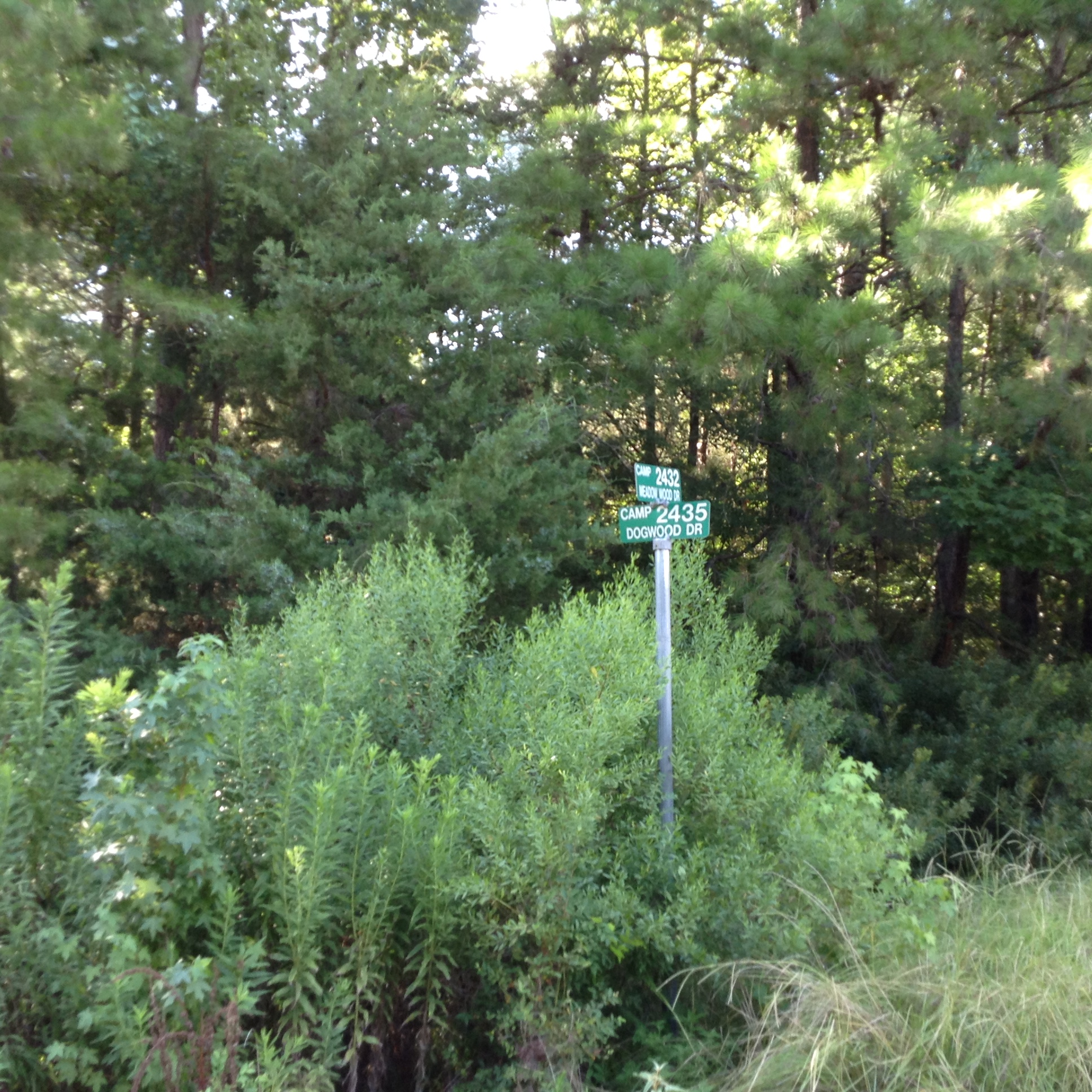 E tx beautiful wooded res bldg lot 2 ac near lake for Build on your lot east texas